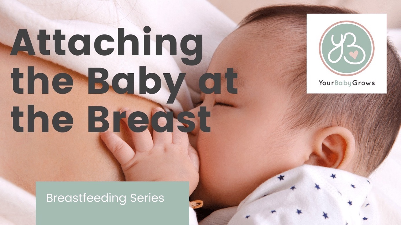 Attaching the Baby at the Breast Video